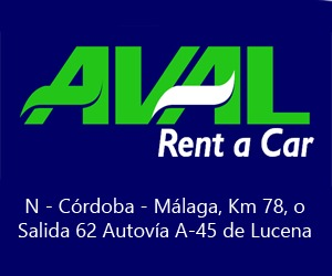 AVAL RENTA CAR (G&T TOP RENALS BUSINESS)