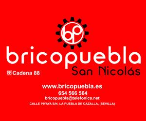 BRICOPUEBLA