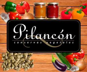 CONSERVAS PILANCON